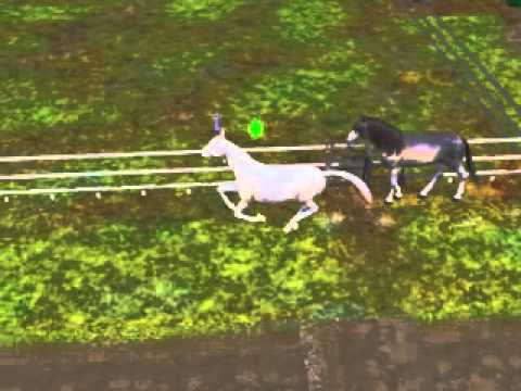 The Sims 3 Pets - My Horse Roaming Around Meeting Wild Horses