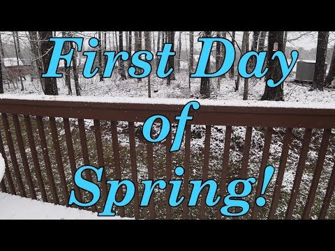 First Day of Spring in the South