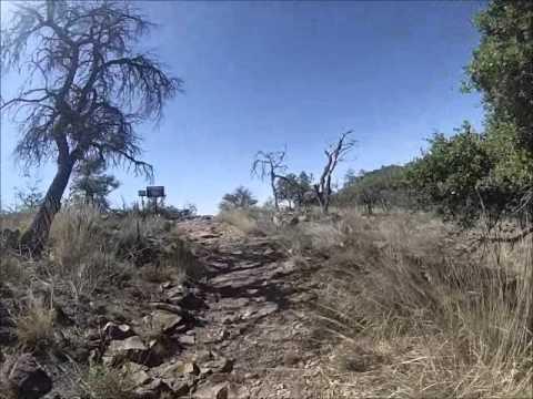 Big Bend - South Rim - Texas Hiking