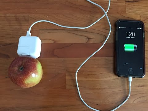 Turning fruit into electricity