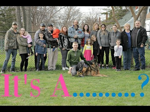 New Baby Gender Reveal, Meet my LARGE family!