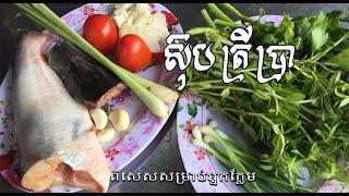 របៀបធ្វើស៊ុបត្រីប្រា Soup of fish