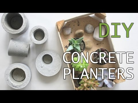 Easy and Affordable DIY Concrete Planters