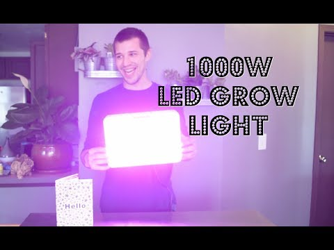 LED Grow Light Review! HIGROW 1000W