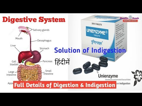 Human Digestive System || Cause of Indigestion | Unienzyme Tablets Benefits | in Hindi | Health Rank