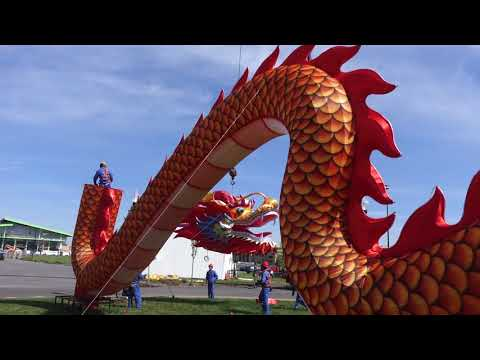 Dragon display complete at new Chinese Lantern Festival