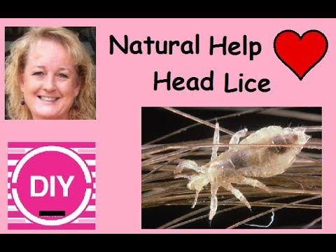 How to make Brigitte's Natural Lice Killing Shampoo