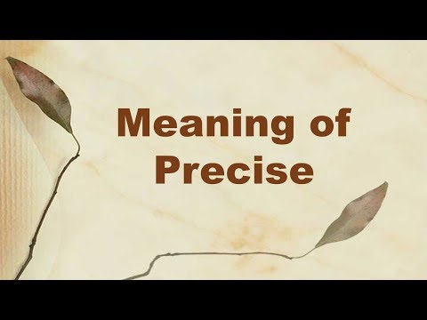Meaning of Precise