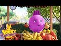Cartoons For Children SUNNY BUNNIES FRUIT STALL Funny Cartoons For Children
