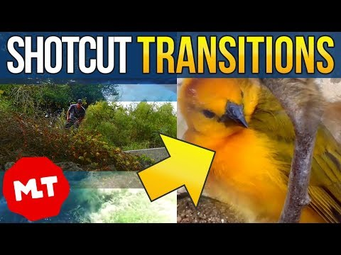 Shotcut Video Transitions Tutorial