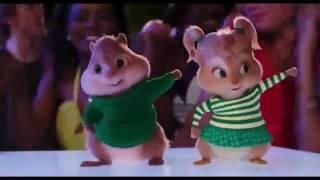 Ammadu let's do kummudu squirrel version