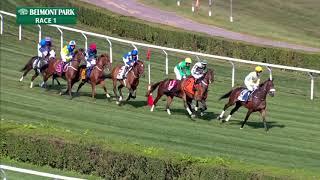Snap Decision - 2019 - The William Entenmann Memorial Hurdle Stakes