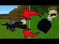cara menetaskan TELUR ENDER DRAGON!!!! Minecraft Pocket Edition 1.0+