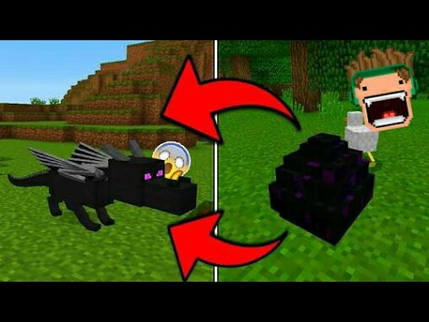 cara menetaskan TELUR ENDER DRAGON!!!! Minecraft Pocket Edition 1.0+