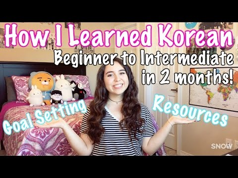 How I learned Korean || Absolute Beginner to Intermediate in 2 Months
