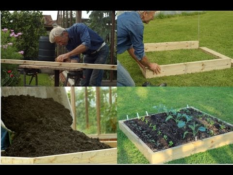 Create a no dig raised bed, compost on weeds, with tips on planting + see the growth