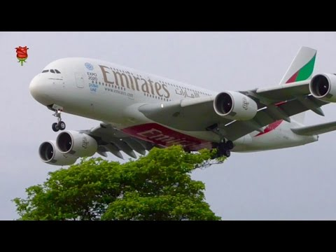 **Heavies +** CLOSE-UP Landing at London Heathrow Airport (LHR)✈️✈️