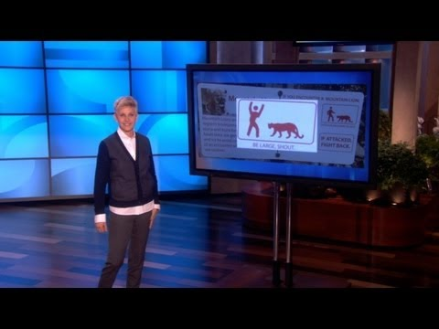 Ellen's Got Mountain Lions