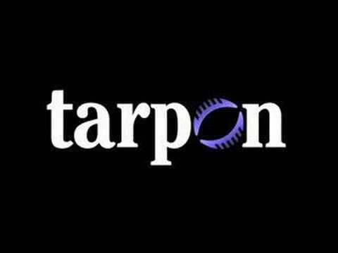 Contractor dispensation - high take home pay - Tarpon Ltd