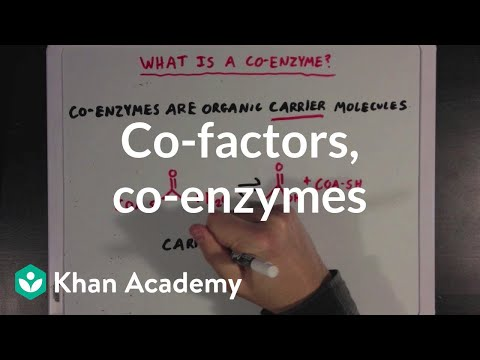 Co-factors, co-enzymes, and vitamins   MCAT   Khan Academy