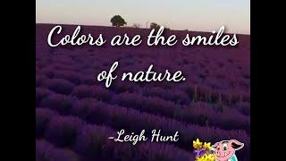 Celebrating Earth Day 2018 || ViralHog