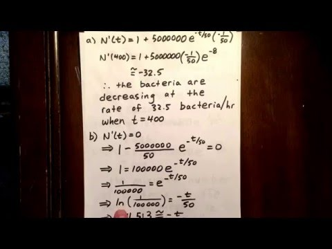 5 optimization involving exponential function