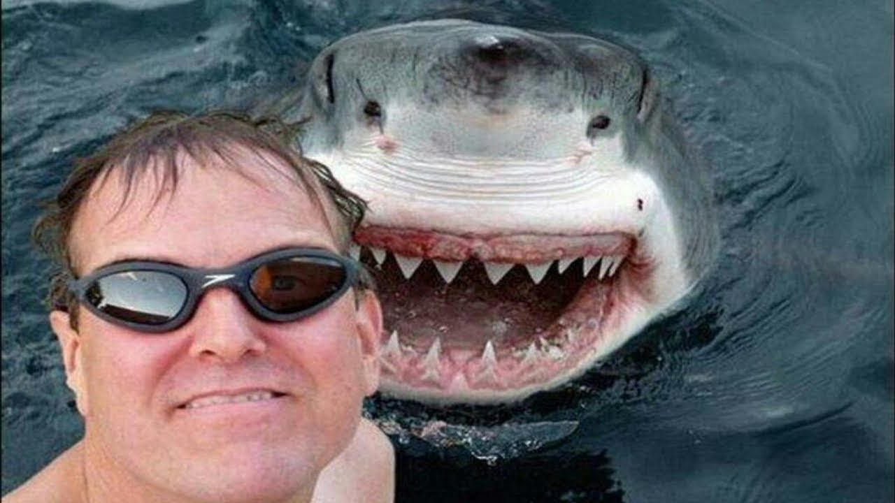 20 Most Dangerous Selfies Ever!