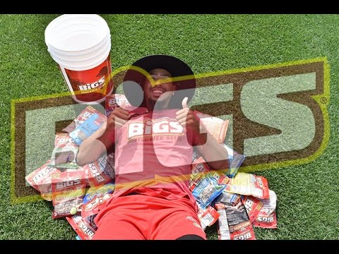 Digging in the Box- BIGS Sunflower Seeds HUGE Bucket Unboxing