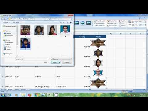 Excel 2007: how to insert a picture into a cell in Excel database