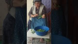 Karacalar köyü emirdağ