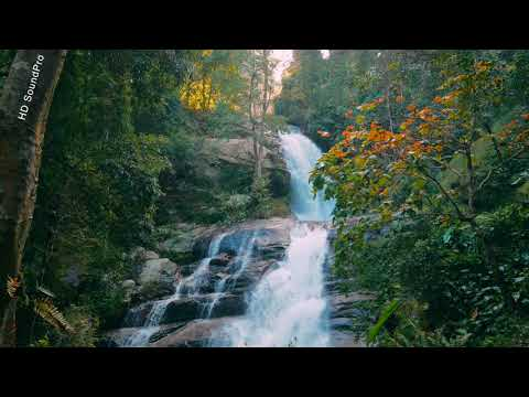 Relaxing Waterfall Sounds for Sleep | Water White Noise (60 Minutes)