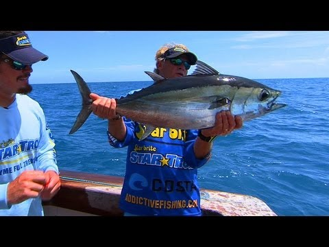 Fly Fishing Offshore for Blackfin Tuna in Key West Florida