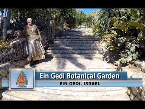 Ein-Gedi Botanical Garden-Explore Israel with The RiverWinds 2017