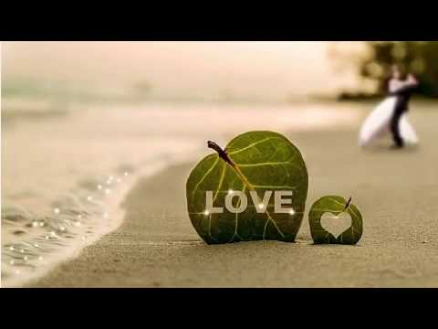 Love blooms in the Andaman