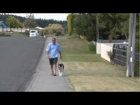 Lotto Winning Wheel draw 14/01/2012 - Nicholas from the Manawatu