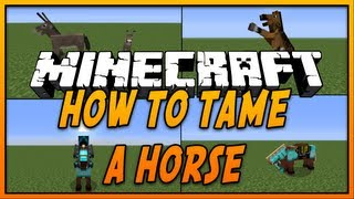 How To Tame And Ride A Horse In Minecraft