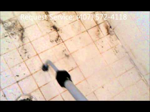 Vapor Steamer Kill and Remove Mold in Nasty Shower. Grout Cleaning