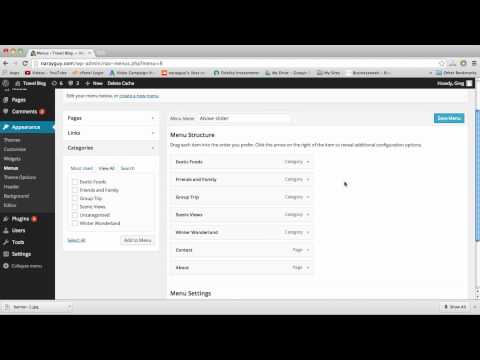 Custom Menus & Drop Down Menus - WordPress
