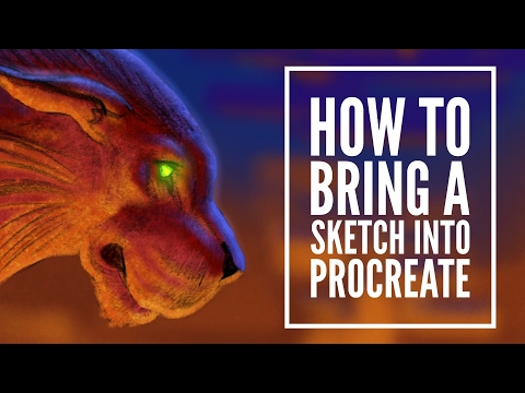 How to Bring a Sketch Into Procreate