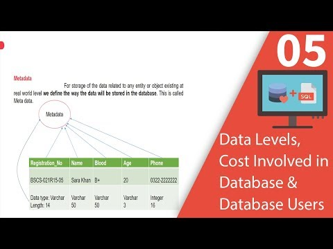 Data Levels, Cost Involved in Database And Database Users