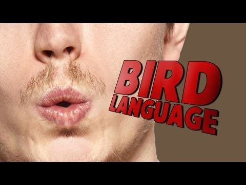 Talking Like A Bird? People Whistle As Everyday Language