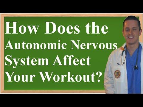 How Does the Autonomic Nervous System Affect Your Workout? (Rest & Digest Vs Fight or Flight)