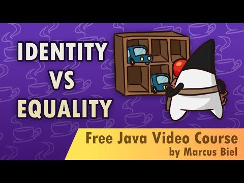 Identity vs. Equality in Java with coding examples
