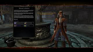 Offensive Companions Neverwinter