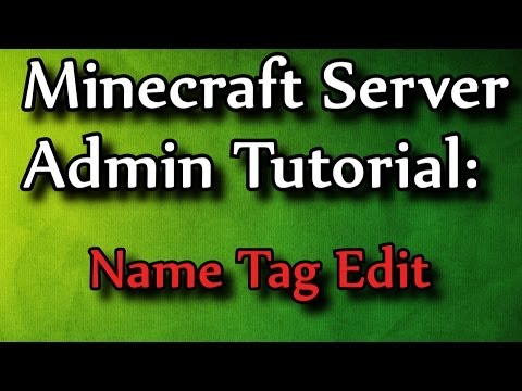 Minecraft Admin How-To: Name Tag Edit (/ne)