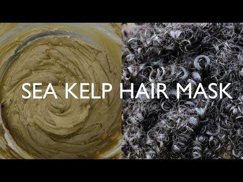 Sea Kelp Hair Mask on Natural Hair