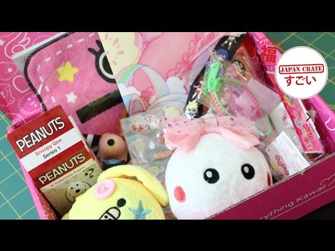 Kawaii Monthly Subscription Box Opening!