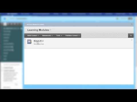 Blackboard Learn 9.1 Create and Build Learning Modules tool