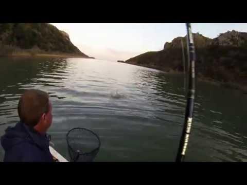 12kg Garrick (Leervis) - Transkei Fishing - South Africa