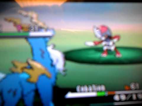how to catch pawniard in pokemon white